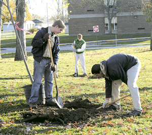 LIONS CLUB PLANT TREES  TO ENHANCE WAYNEDALE PARK
