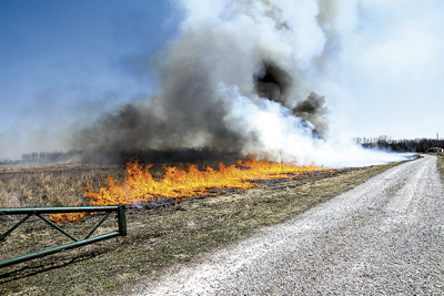 HOLY SMOKE! SPRING CLEANING AT EAGLE MARSH. PHOTO BY RICHARD CROSS