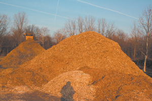 A mountain of mulch grows near the soccer fields at Foster Park off Winchester Road in Waynedale, January 5, 2009.