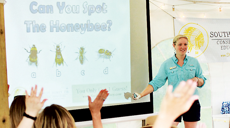 MEGAN RYAN, BUSY AS A BEE – Community Spotlight