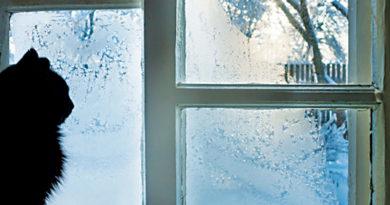 GOT COLD FEET? – Homeowner Rx