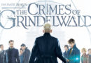 CRIMES OF GRINDELWALD FALLS SHORT – At The Movies With Kasey