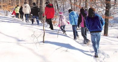 STATE PARK PROPERTIES  OFFER NEW YEAR'S DAY HIKES