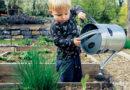 LOCAL FOOD NETWORK RECEIVES USDA FARM TO SCHOOL GRANT