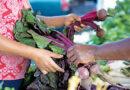 FREE PRODUCE AT FORT WAYNE'S FARMERS MARKET