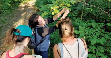 Exploring Wild Edible Plants